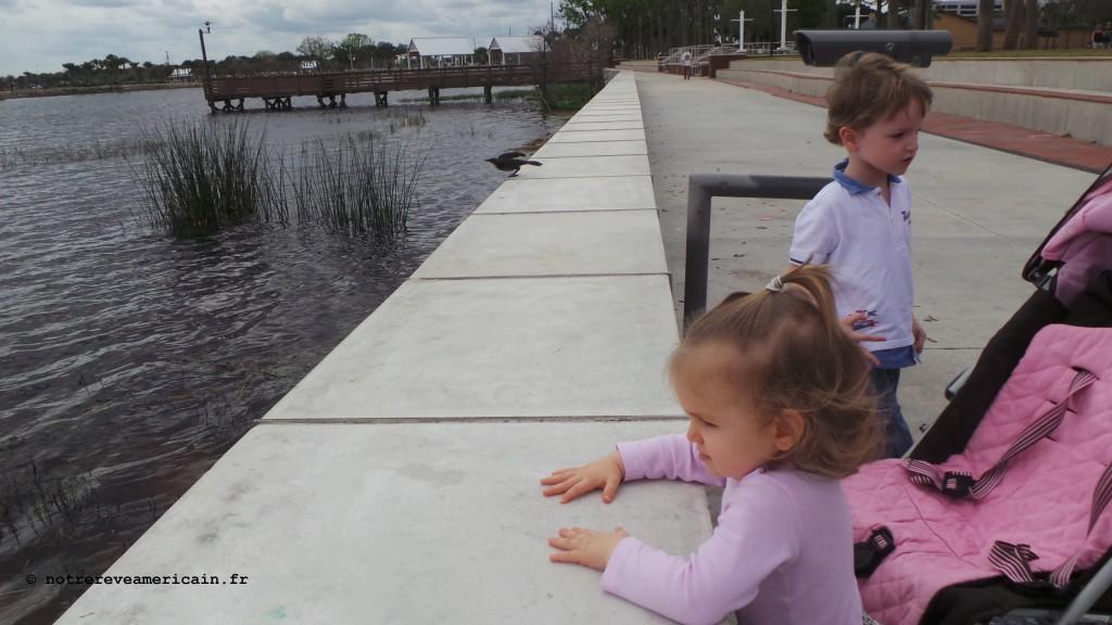 Parc kissimmee Floride Mars 2016 (19)