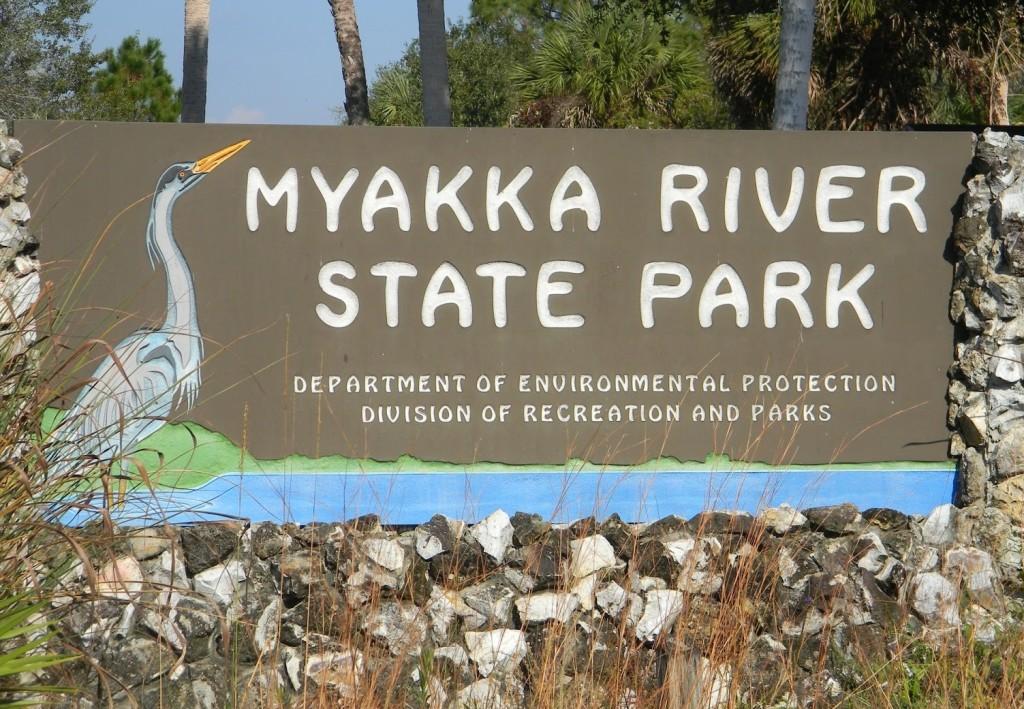 myakka river state park 078