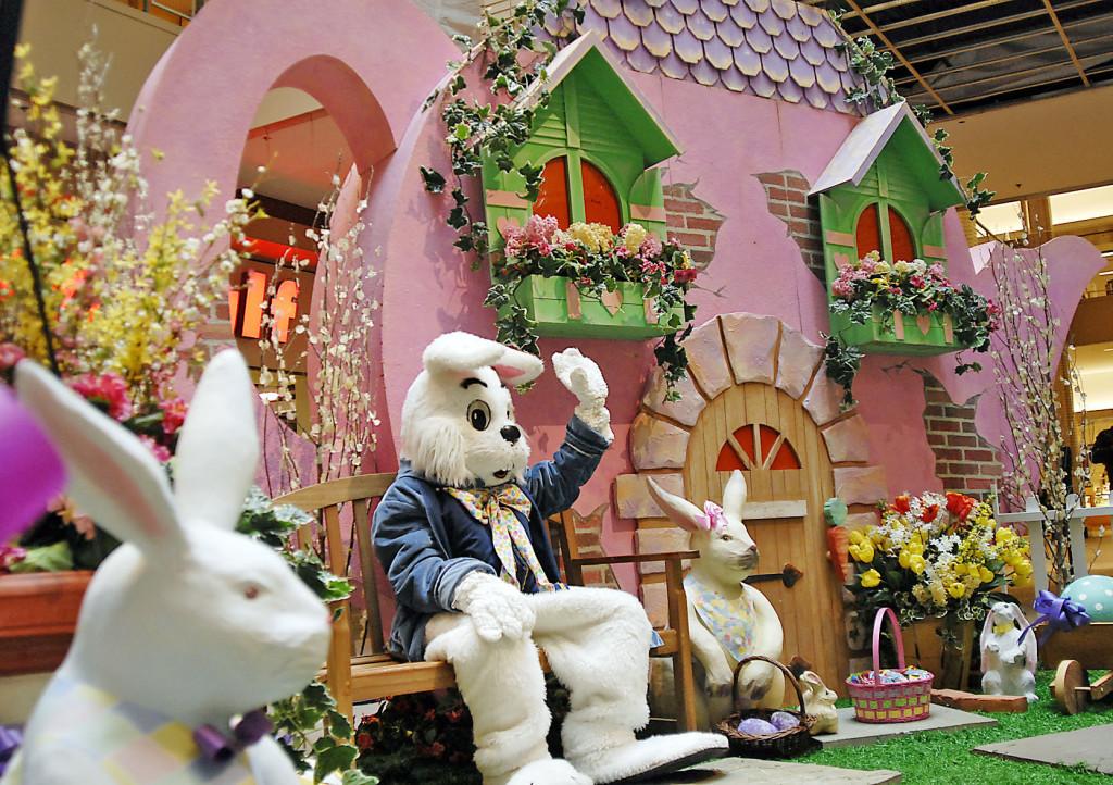 newport-bunny-e554e0d67db453d0