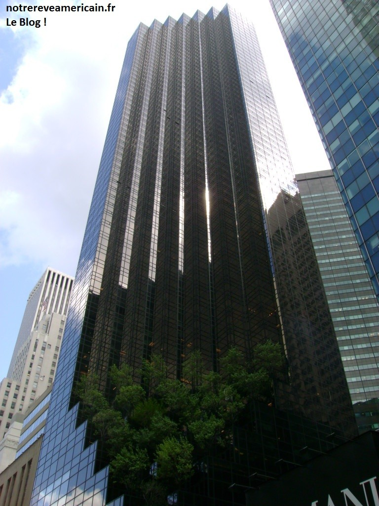 Building-5th-Avenue1-768x1024